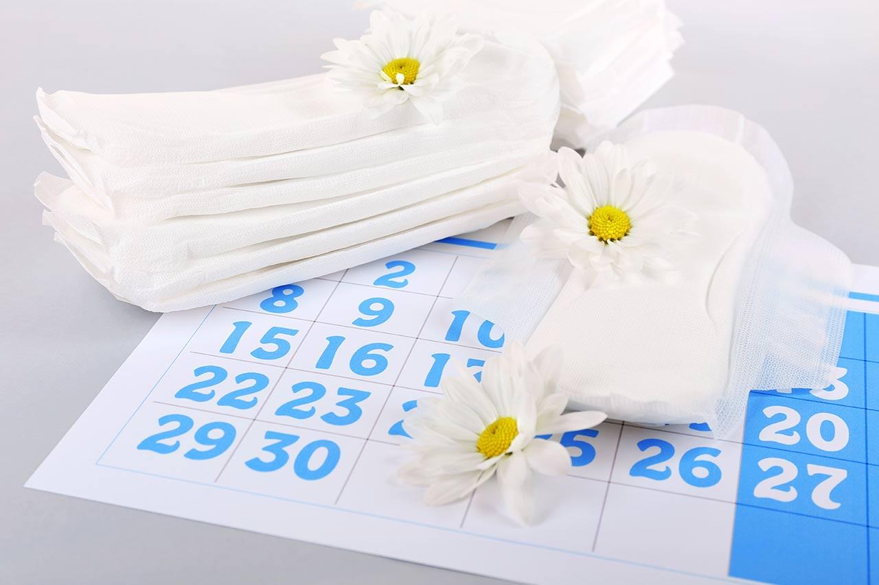 Zykluskalender zum Ausdrucken, kostenlos, download, pdf