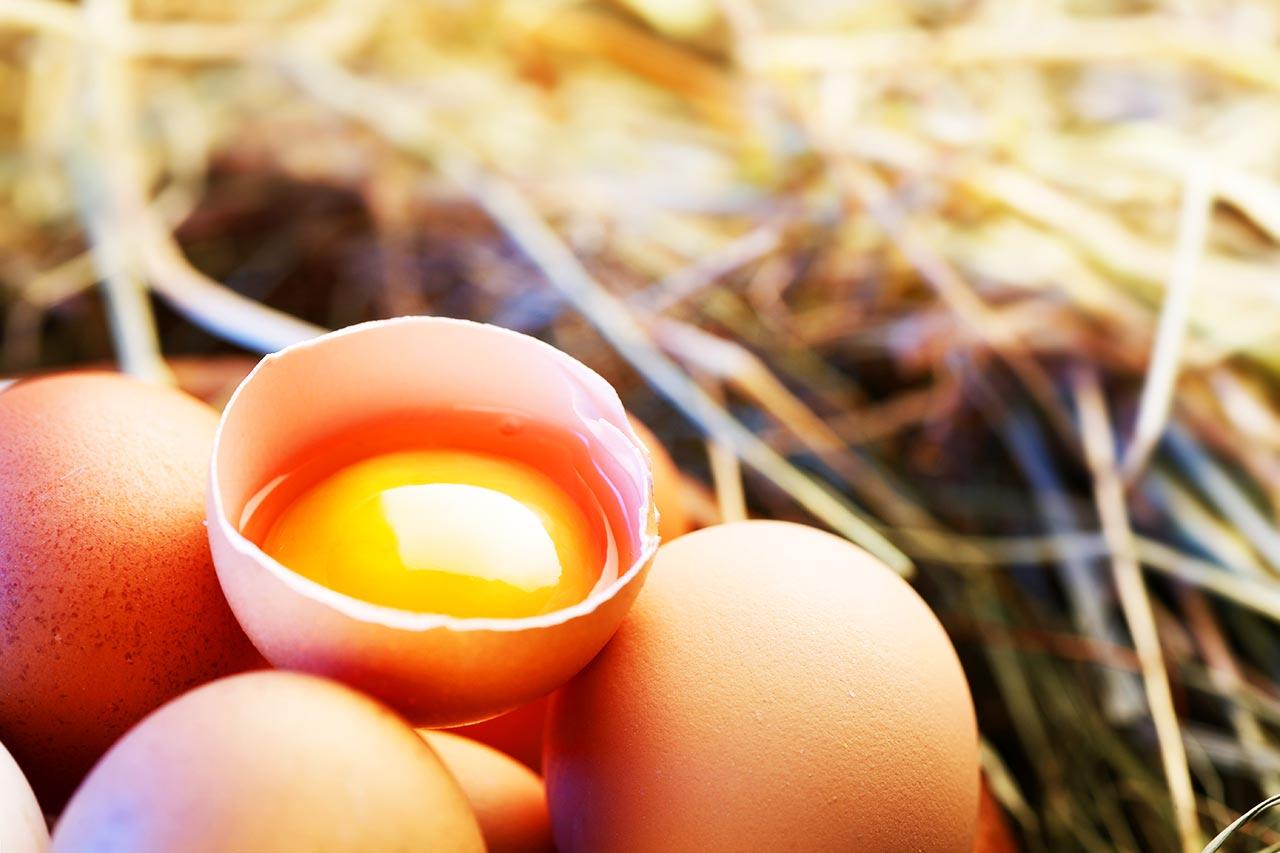 Eier Test, abgelaufene Eier noch frisch