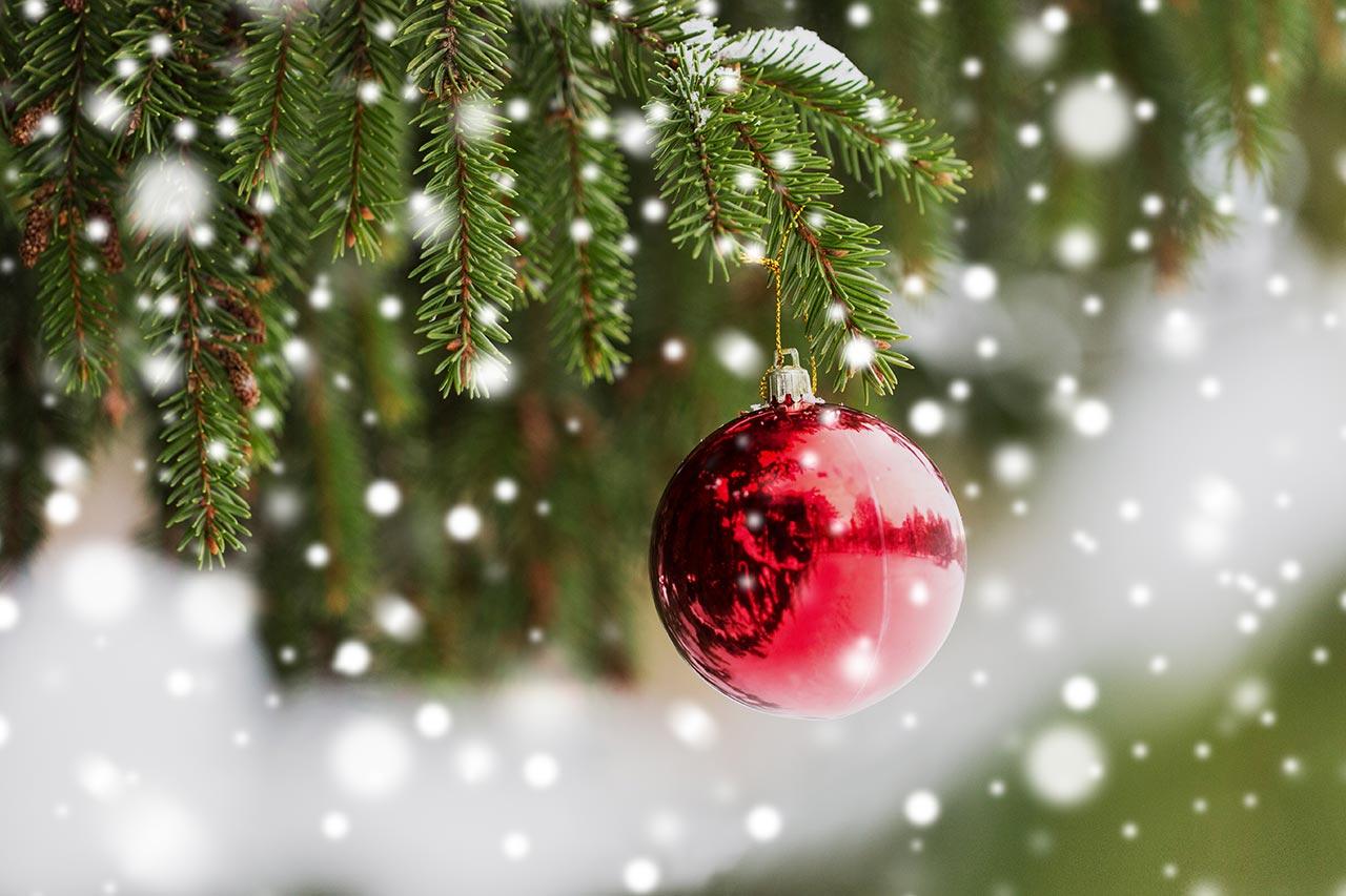 Weihnachtsbaum-Pflege, Tannenbaum frisch halten