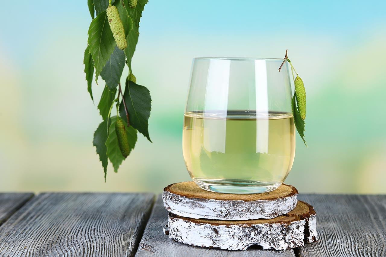 Birkenwasser gesund, Birkensaft Wirkung