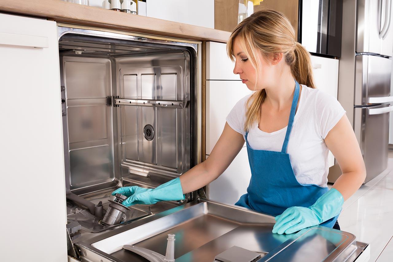 Spülmaschine Sieb reinigen