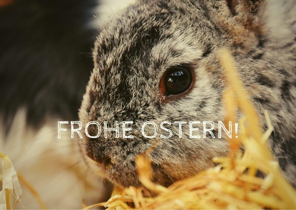 Frohe Ostern Kindertraum 1